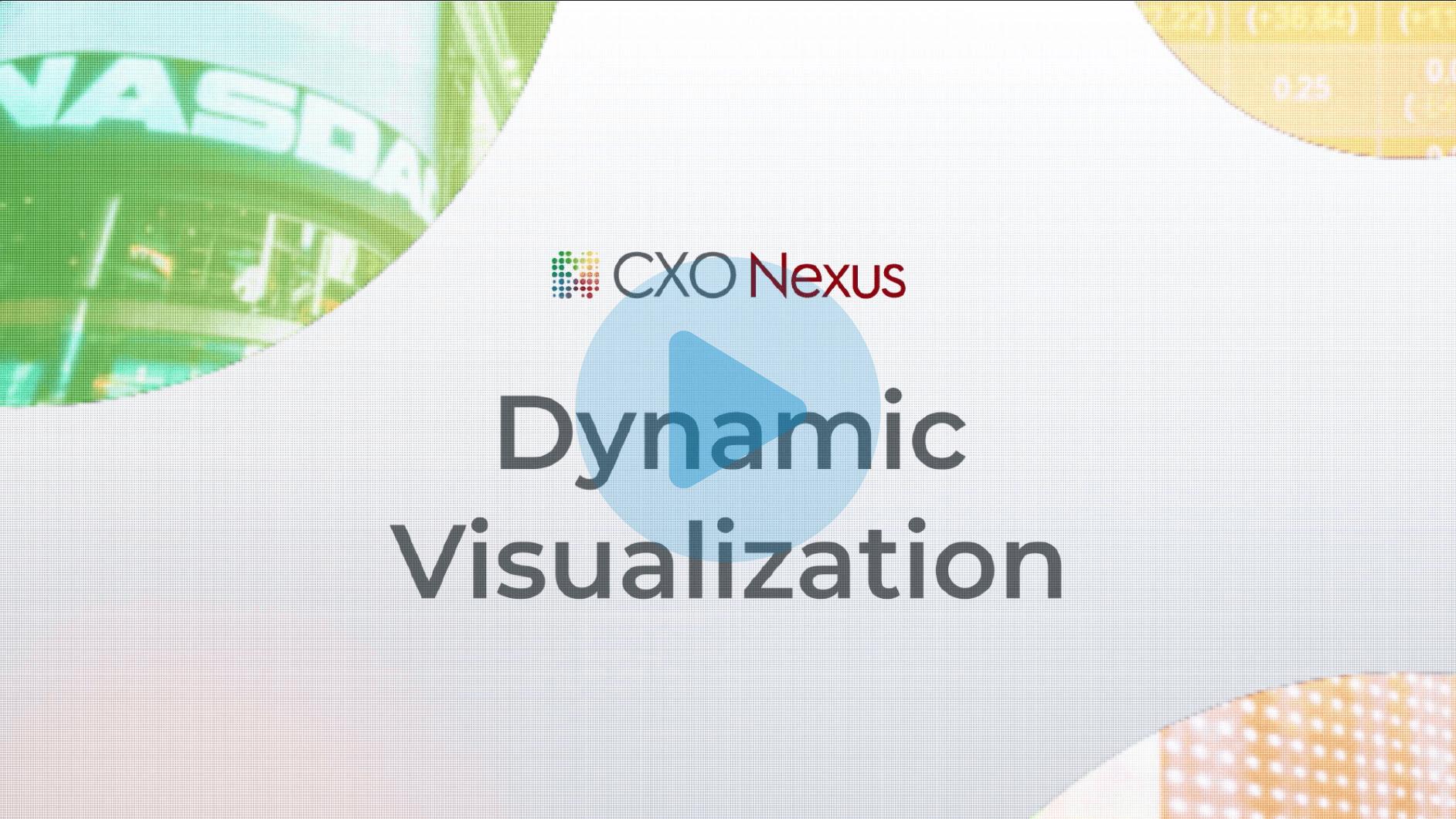 dynamic visualizations video